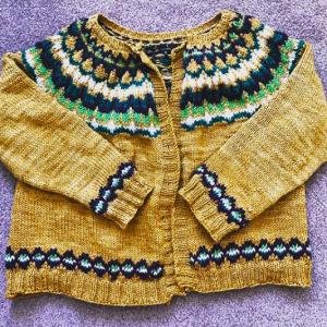 Stranded Circular Yoke Sweater Class on Zoom