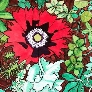 Red Poppy 1 Original Watercolor