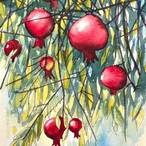 Hanging Pomegranates Original Watercolor